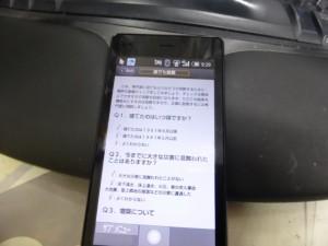 P1050581 (Custom)